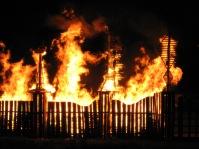 014 3d structures burn