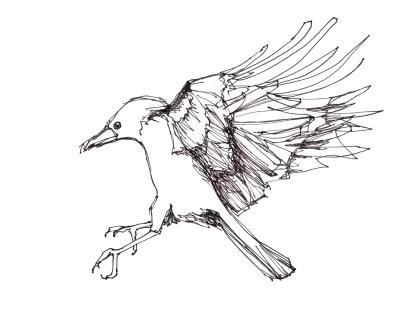Crow Landing